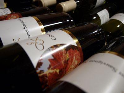 vino-vinojek-06-e1488884381835
